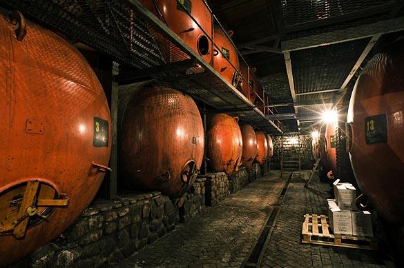 - Gruzija - Shumi winery -7136